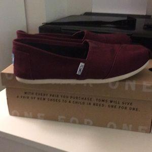 Tom's Dark Burgundy canvas sneaker, size 8.5